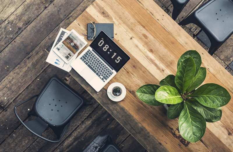 Best top 10 office plants